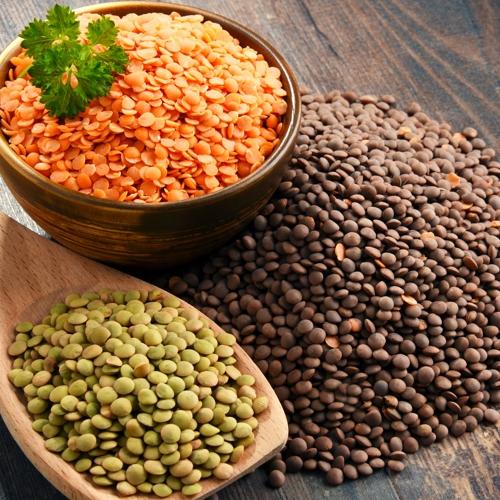 plant-based proteins lentils